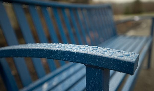 Exeter Bench detail in the rain