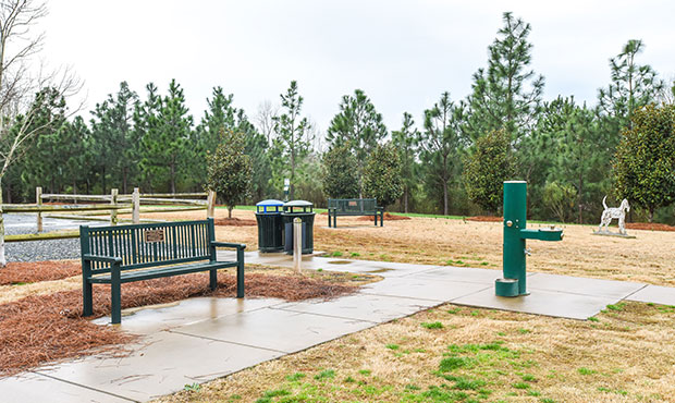 Commemorative Reading benches with plaques and Harmony Litters at a dog park